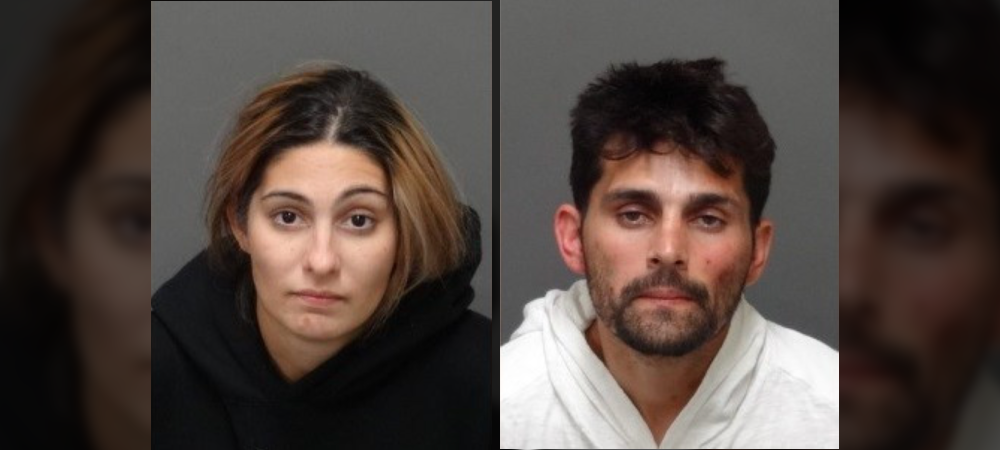 Purse-Snatching Pair Jailed, Accused of Targeting Asian Women